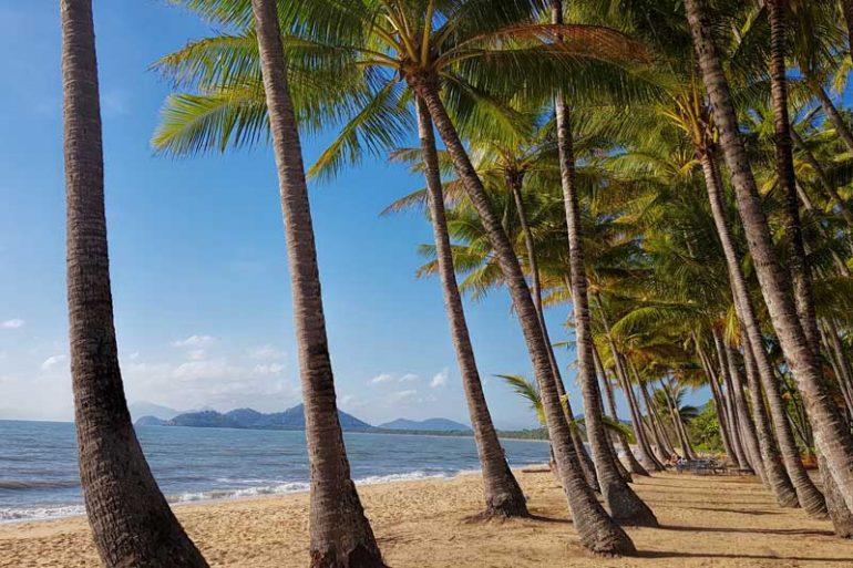 Palm-Cove-or-port-douglas