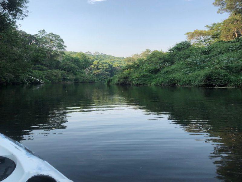 byron-bay-rainforest-fishing