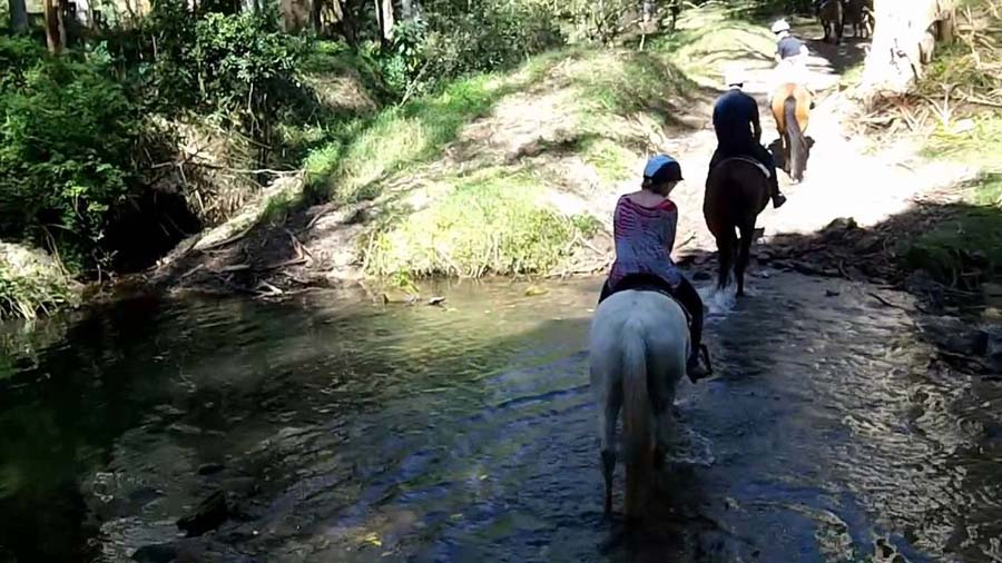 glenworth-valley-horse-riding-fun-date-in-sydney