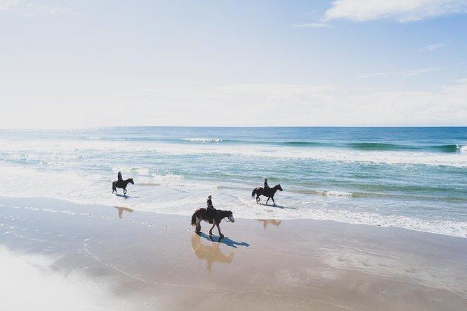 horse-riding-byron-bay