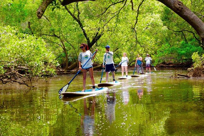 paddle-boarding-byron-bay