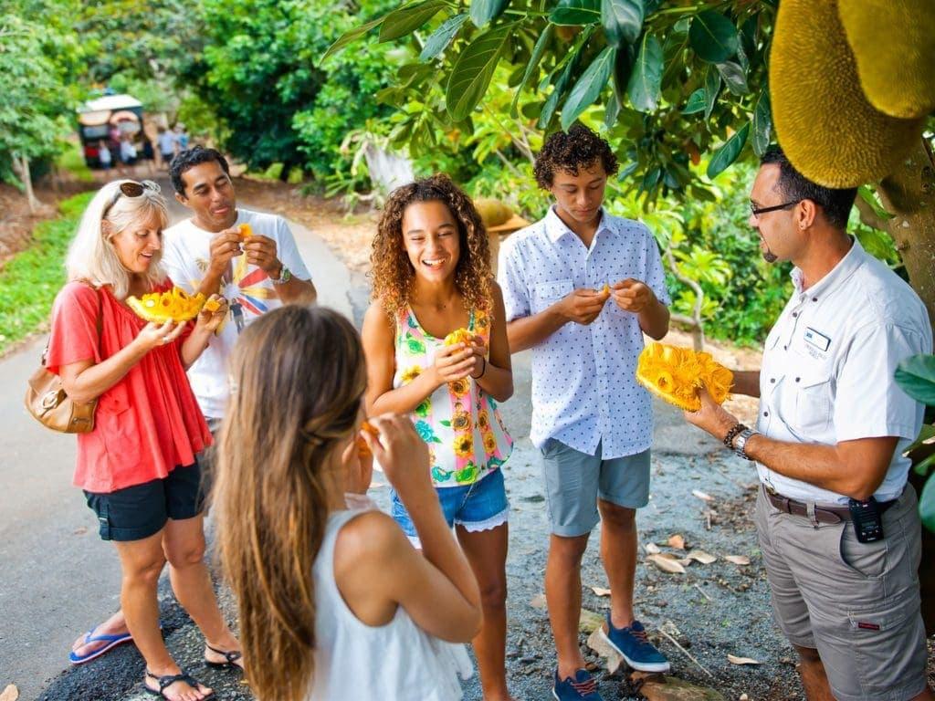 tropical-fruit-world-gold-coast