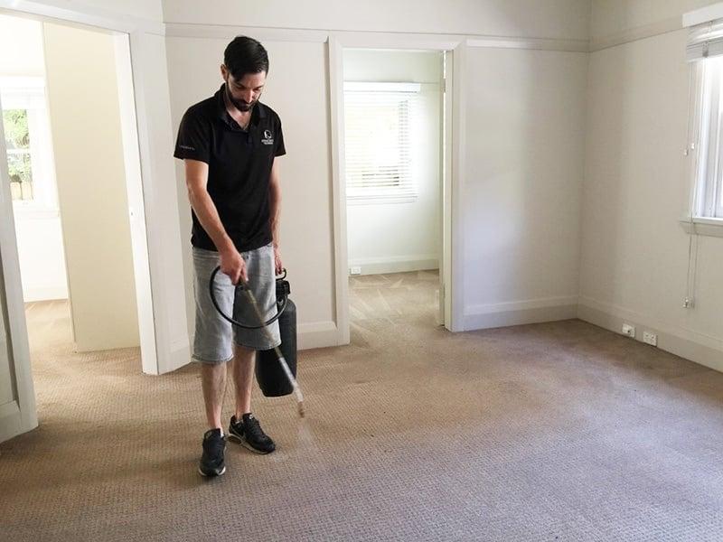 citra-clean-carpet-cleaner-sydney-1