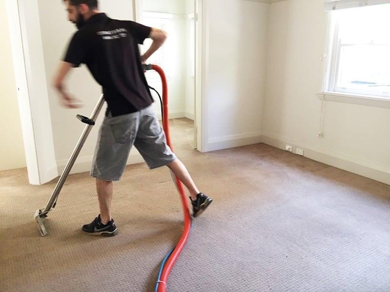 citra-clean-carpet-cleaner-sydney-2