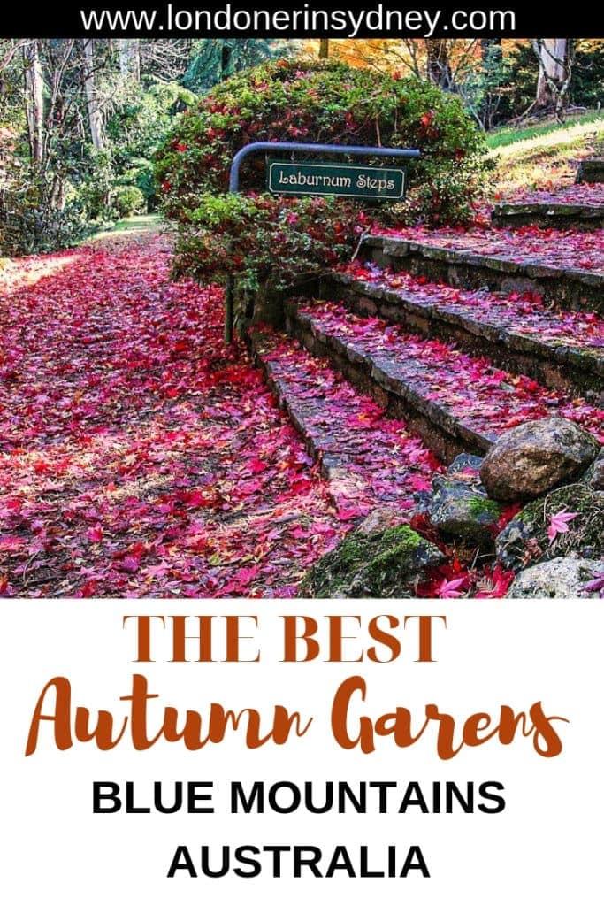 best-gardens-in-blue-mountains