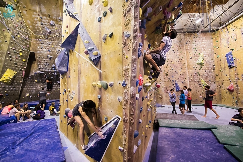 indoor-rock-climbing-sydney-1