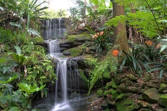 lisgar-gardens-north-sydney-walks