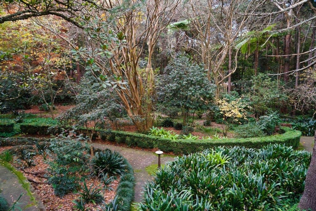 swain-gardens-sydney