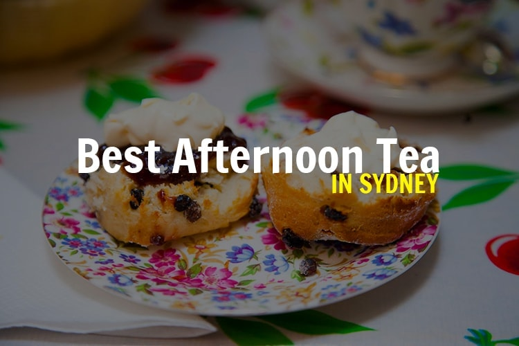 high-tea-sydney-tea-cosy