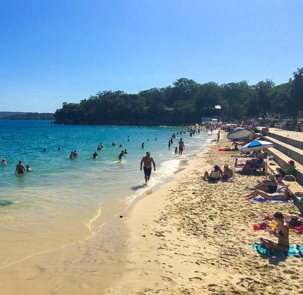 shark-beach-best-city-beach-in-sydney