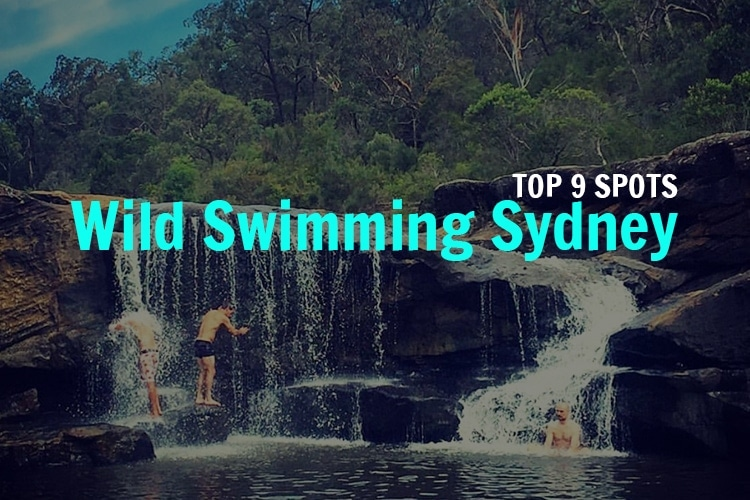 wild-swimming-in-sydney
