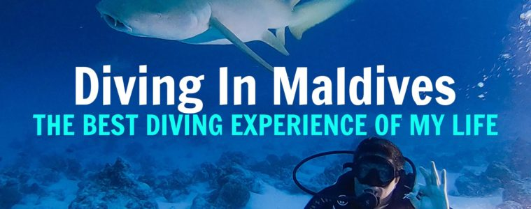 fulidhoo-dive-maldives-cheap-diving