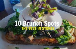 best-brunch-in-sydney