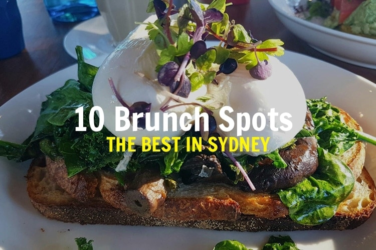 best-brunch-in-sydney