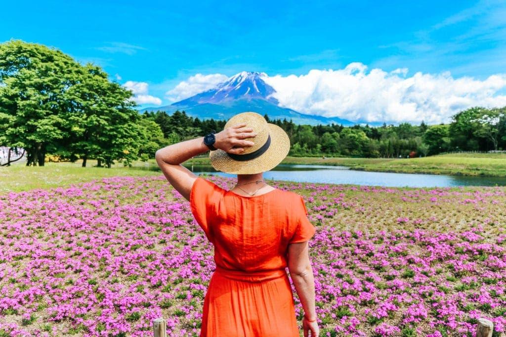 mount-fuji-flower-festival