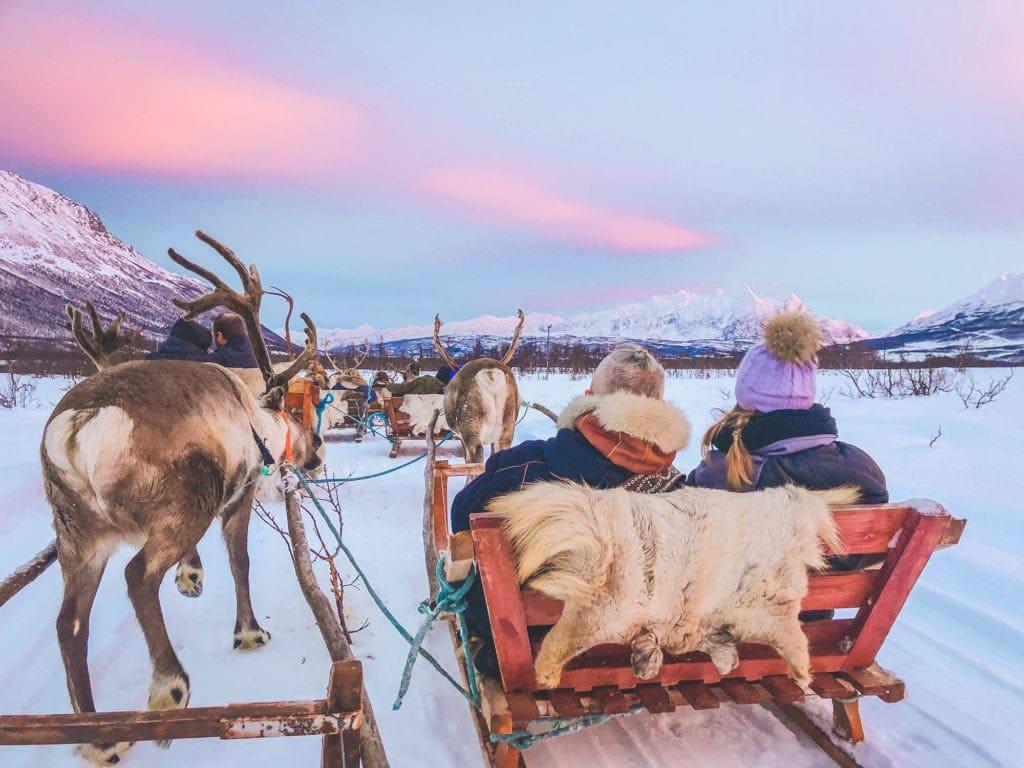 tromso-lapland-reindeer-sledding-tromso