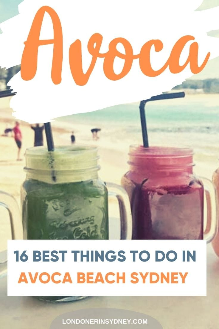 things-to-do-in-avoca-beach-sydney