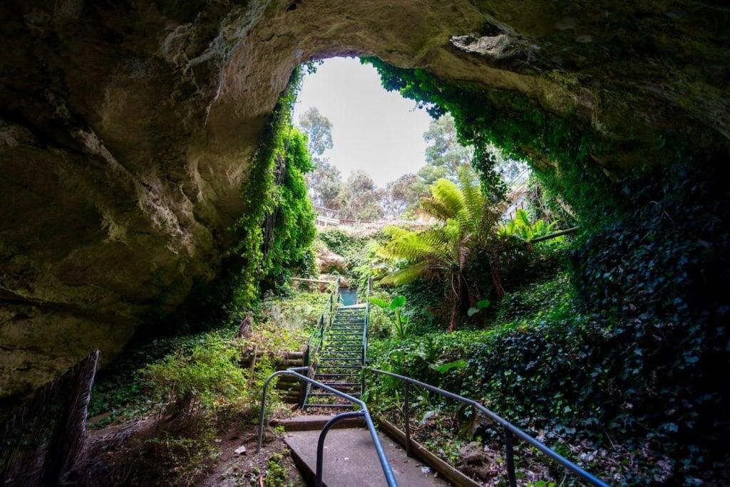 Engelbrecht-Cave-mount-gambier
