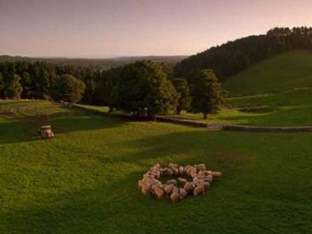 Babe-movie-location-sydney