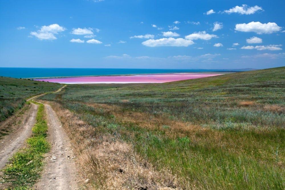 lake-becking-victoria-pink-lake