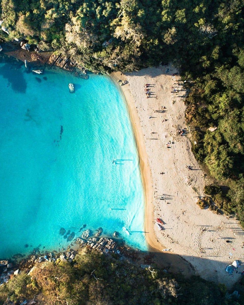 collins-flat-beach-manly-best-beaches-in-sydney