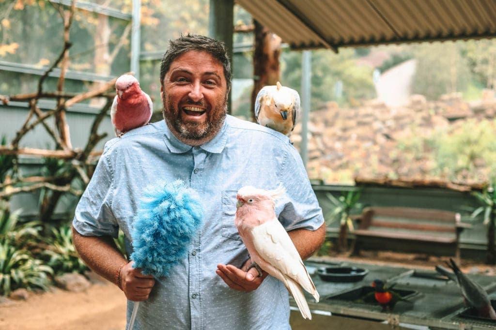 exotic-birds-aviary-maleny-botanic-gardens