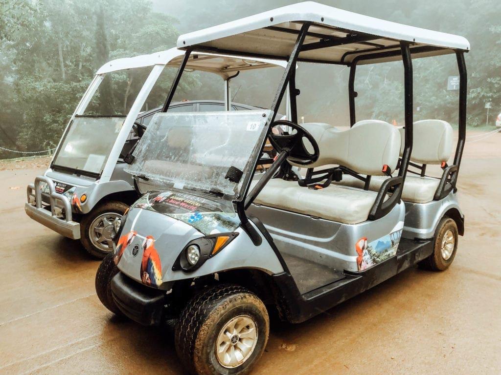 golf-buggy-hire-maleny-botanic-gardens