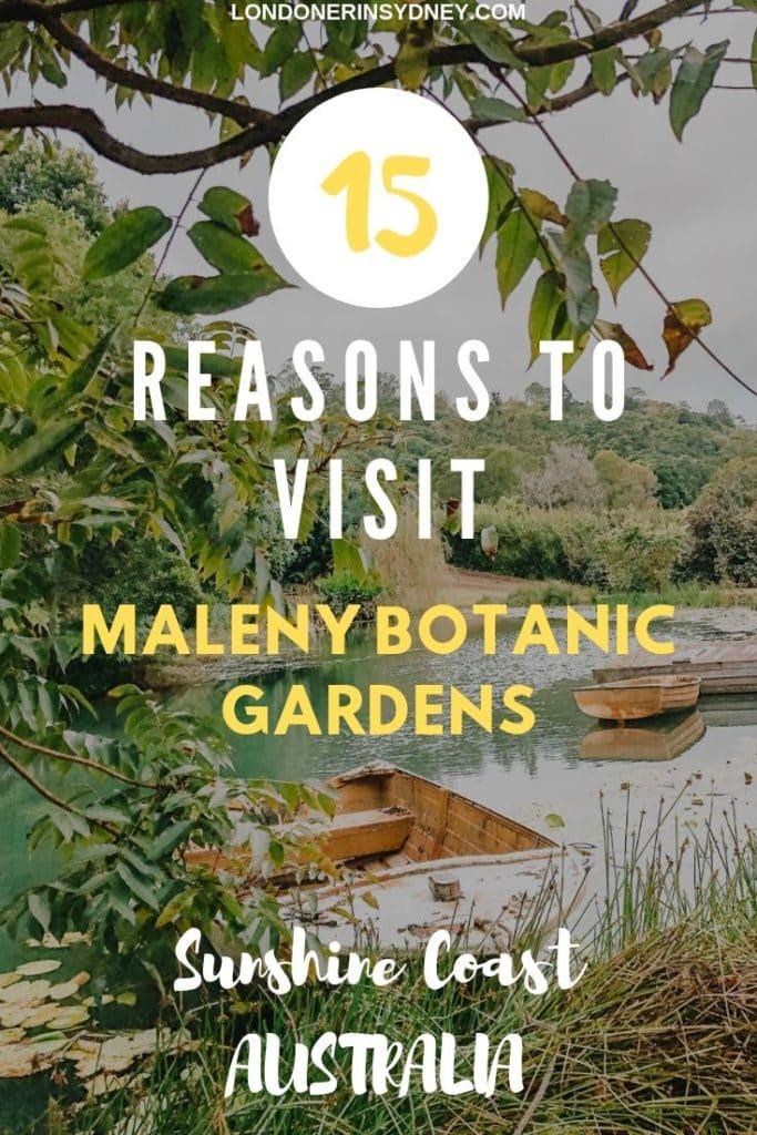 maleny-botanic-gardens-1