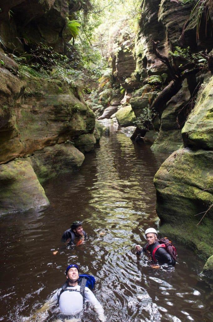 lower-bowen-creek-canyon-blue-mountains