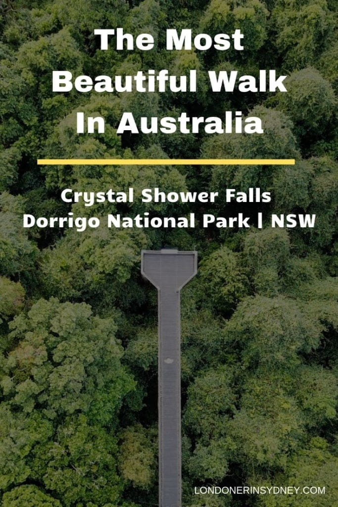 CRYSTAL-SHOWER-FALLS-DORRIGO