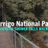 10 reasons to do the Crystal Shower Falls Walk in Dorrigo National Park