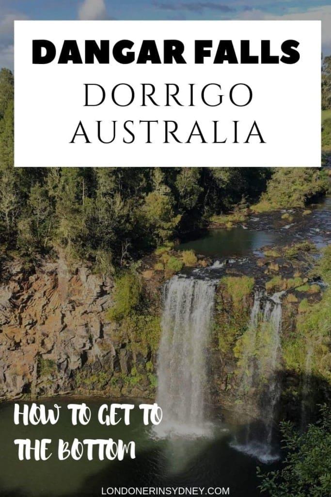 DORRIGO-FALLS-NSW