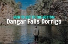 DORRIGO-FALLS