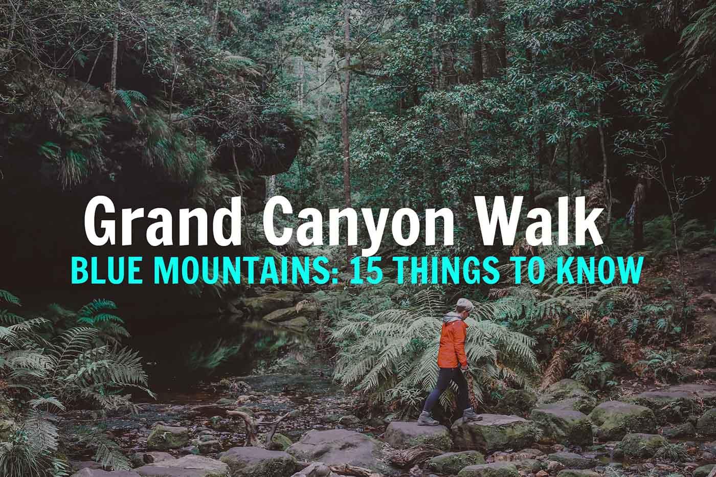 GRAND-CANYON-WALK-blue mountains