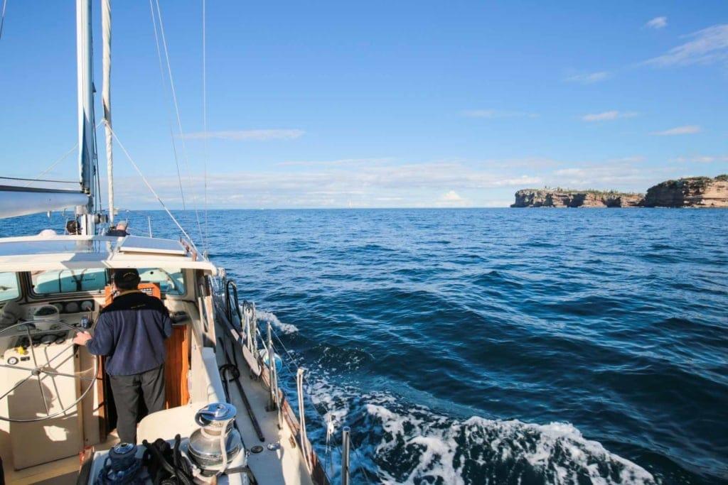 sydney-eco-whale-adventures