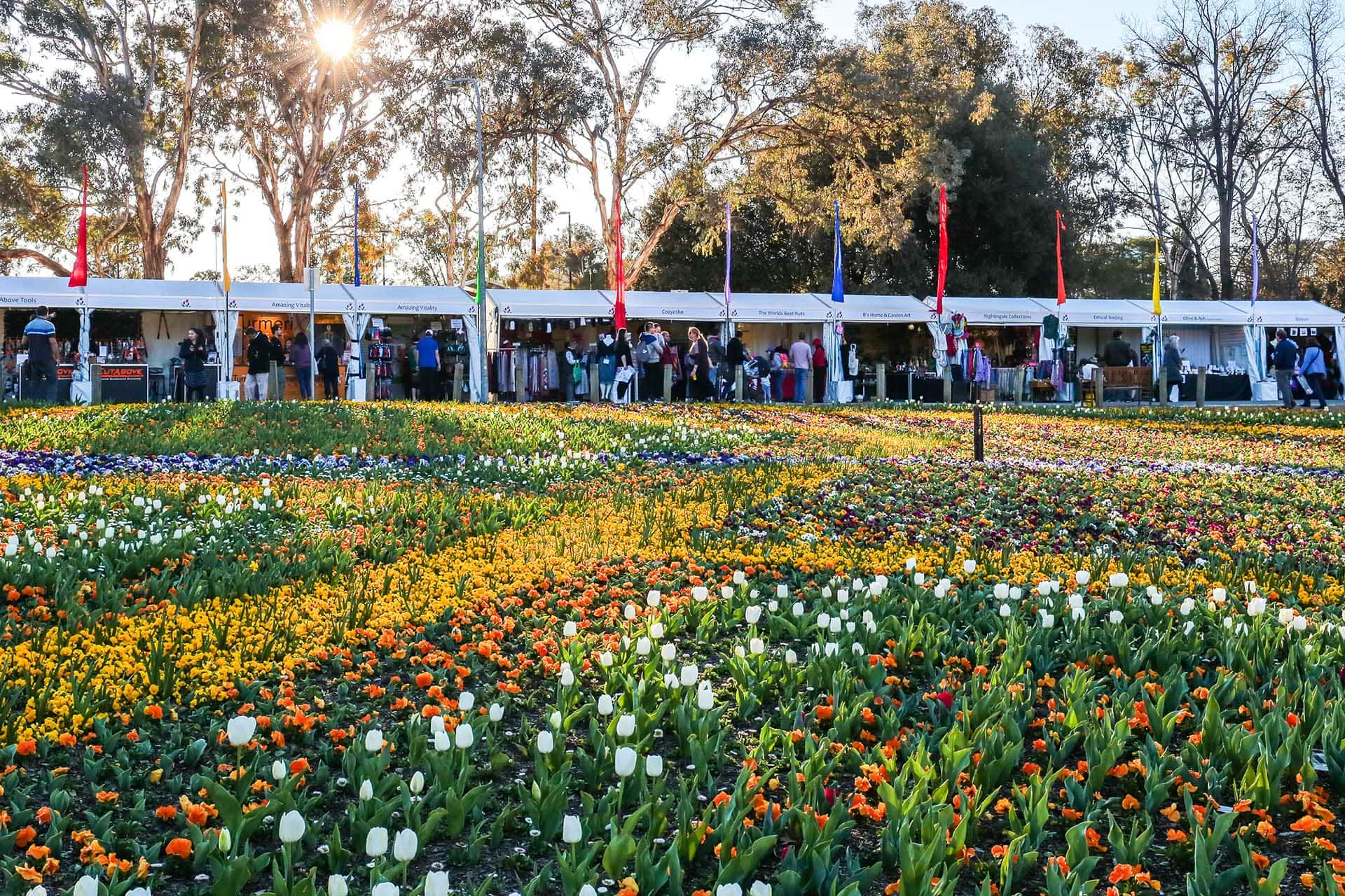 10 Reasons To Visit Canberra Floriade Flower Festival (plus other secret gardens)