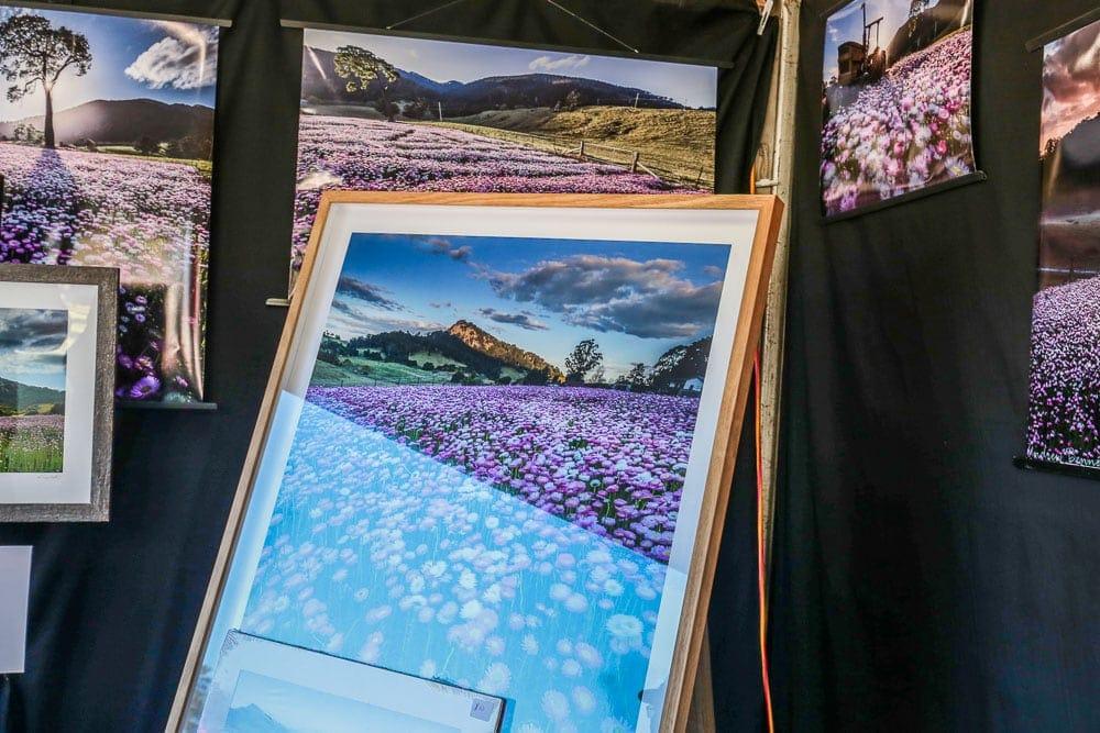 floriade-festival-reality