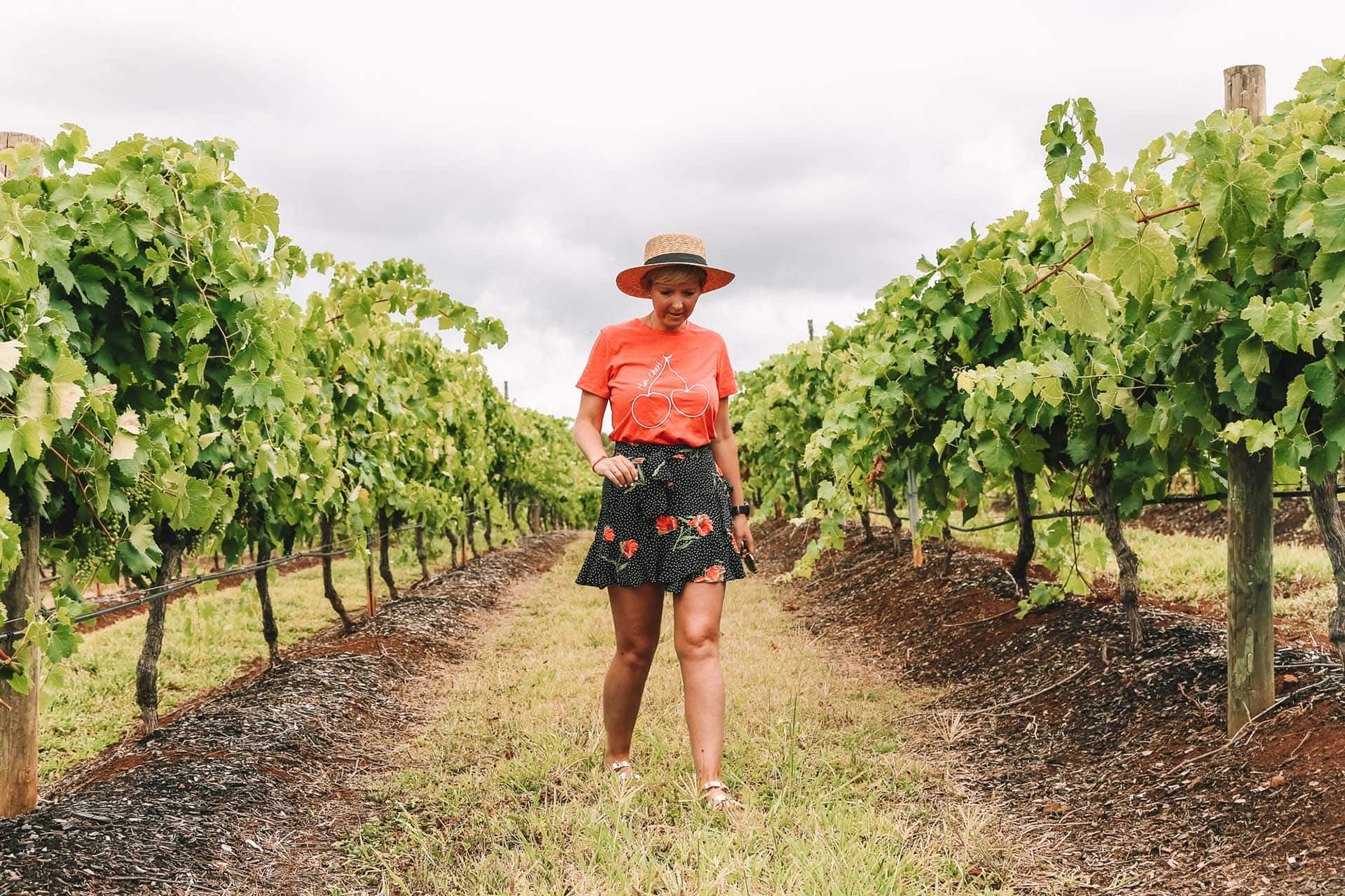 13 Best Things To Do In Hunter Valley NSW