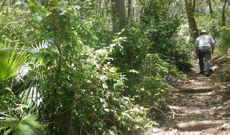 bridle-trail-south-west-rocks