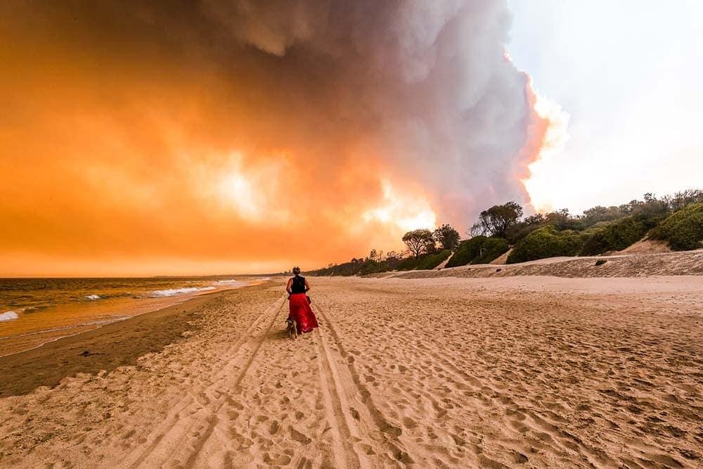 nsw-bush-fires-australia-1