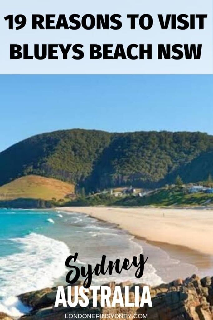 BLUEYS-BEACH-PACIFIC-PALMS-NSW