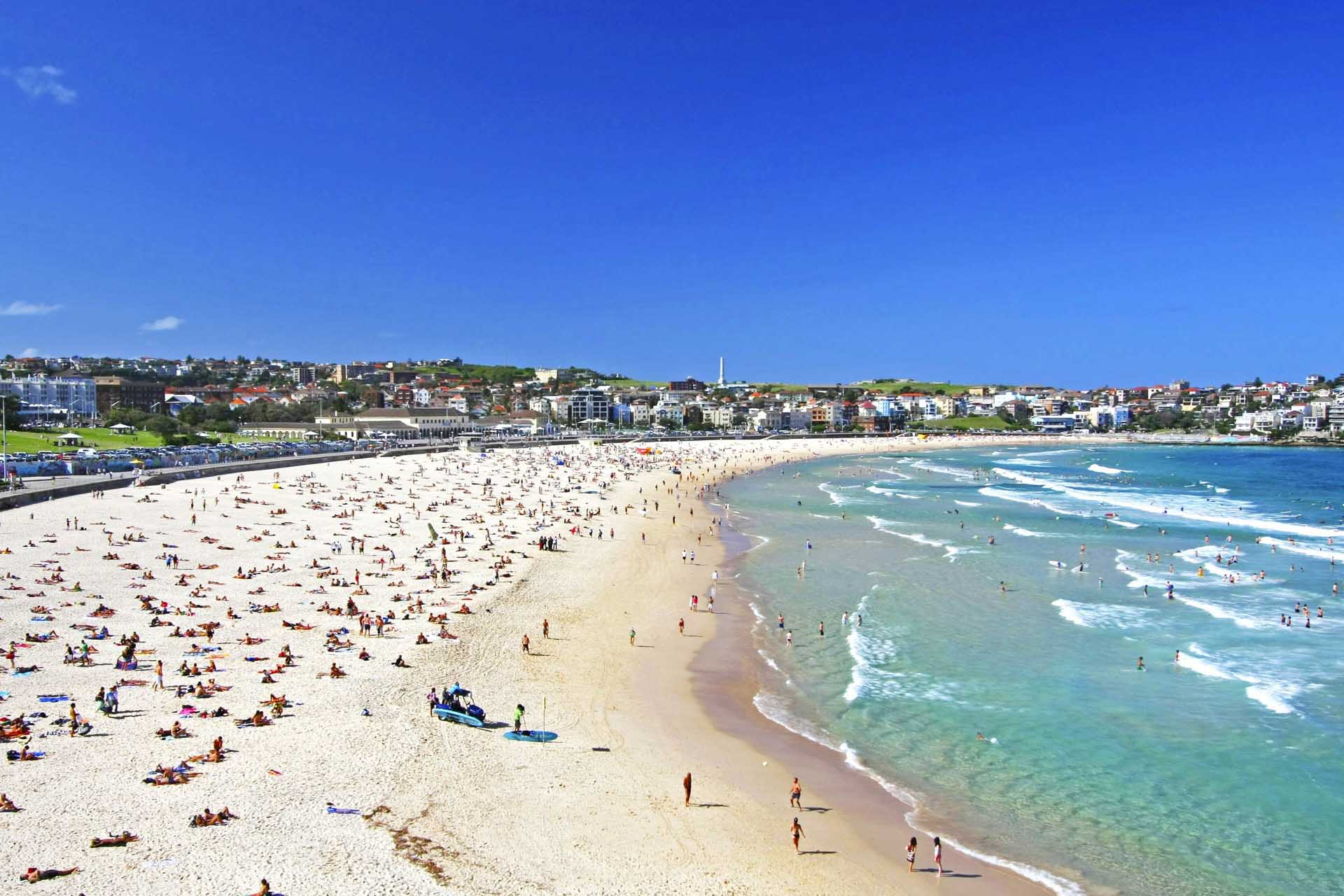 35 Best Beaches In Sydney By Public Transport