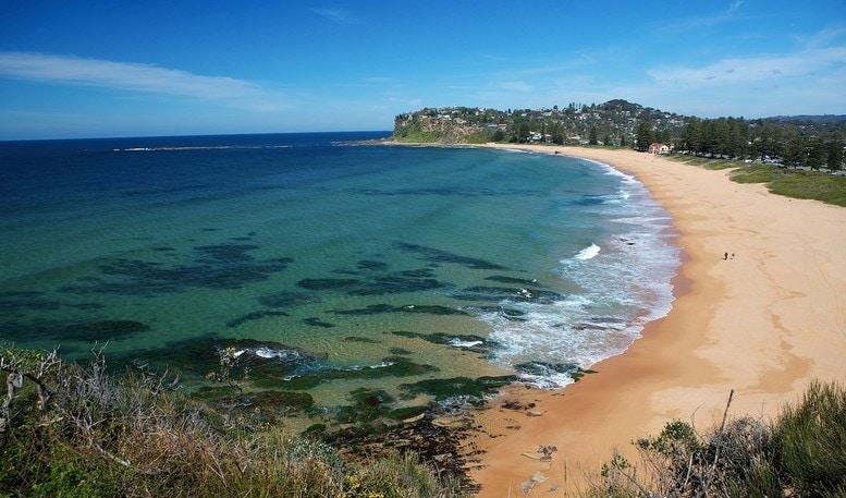 newport-beach-sydney