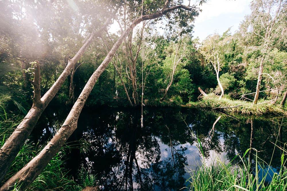 waterpark-creek-byfield-national-park