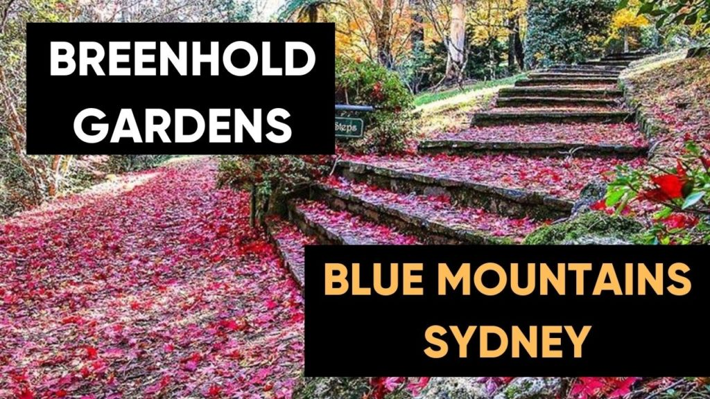 Beautiful Breenhold Gardens In Blue Mountains