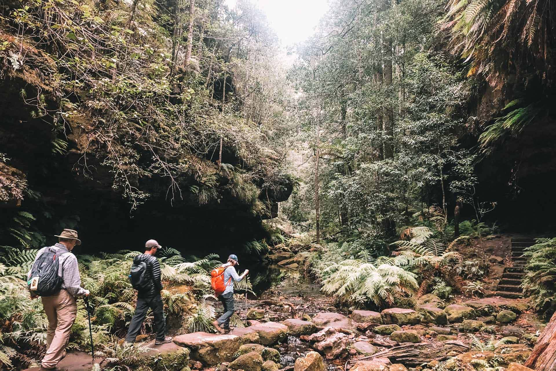 How To Spend A Weekend From Sydney Hiking In Blue Mountains