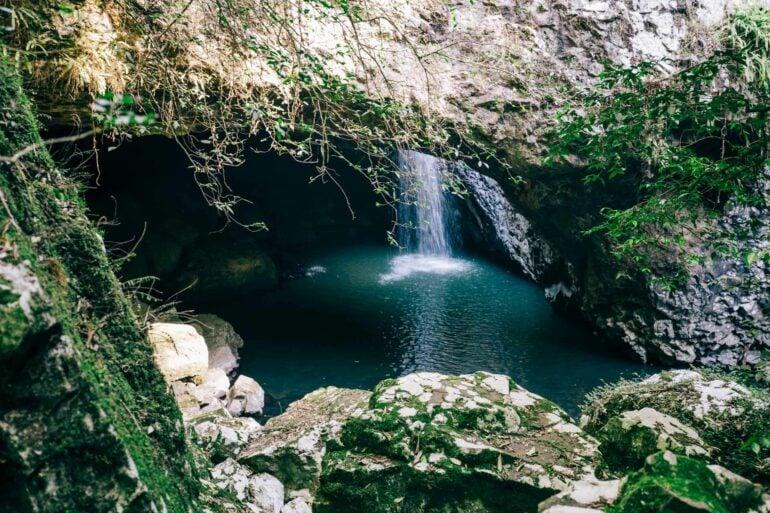 natural-bridge-springbrook-national-park-9
