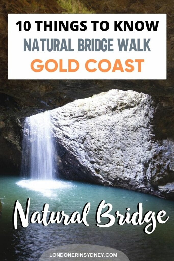 natural-bridge-walk-springbrook-national-park