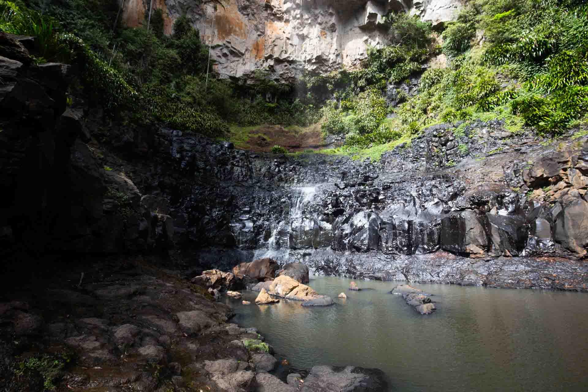 purling-brook-falls-springbrook-national-park-16