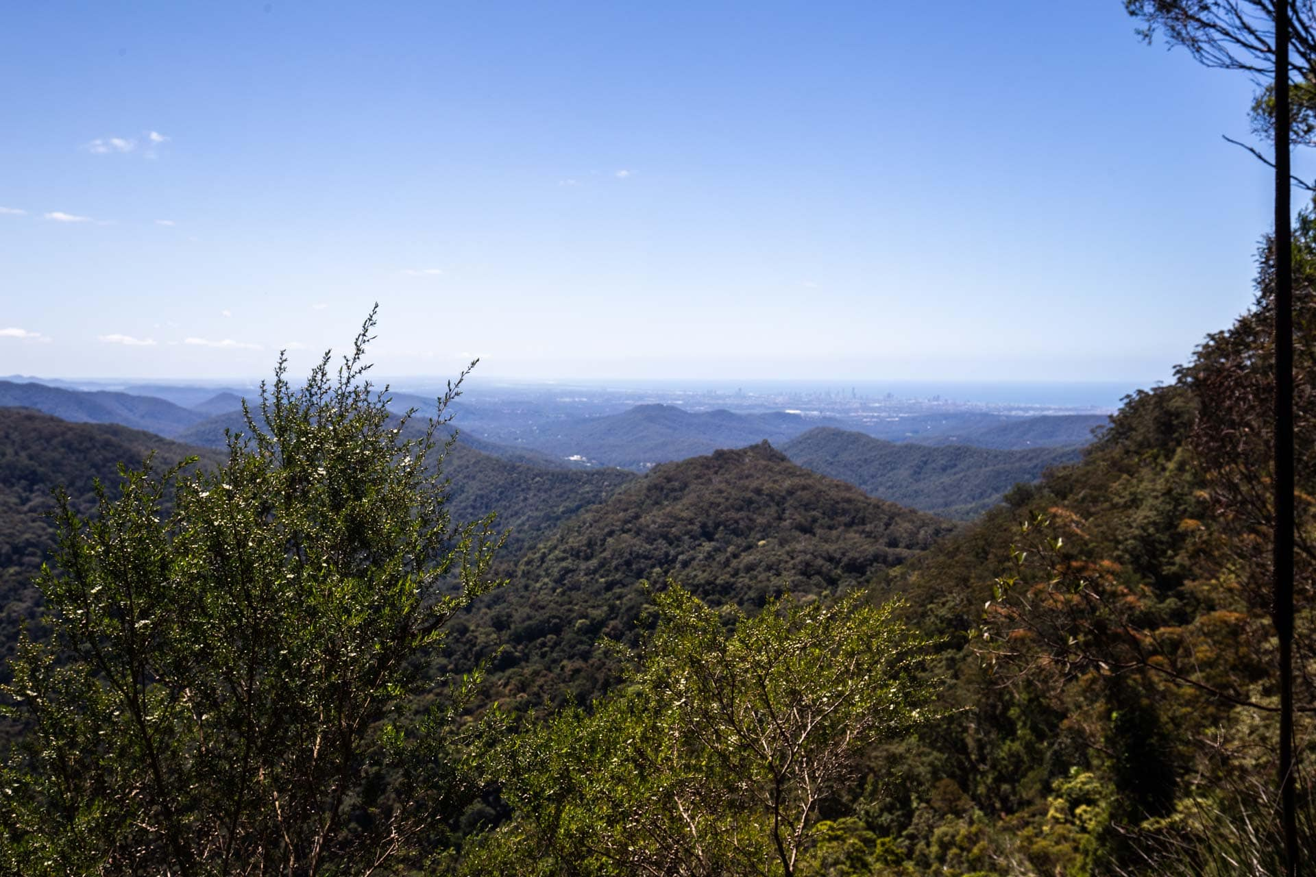 purling-brook-falls-springbrook-national-park-28